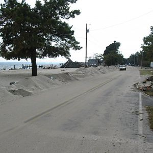 Piney Point - Plowed Road