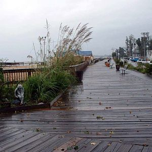 Board-Walk-From-Pier-end