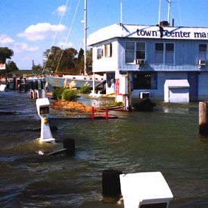 Town Center Marina Underwater
