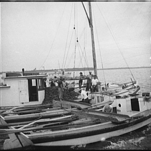 The buy boat of the oyster fleet. Rock Point, Maryland, 1936