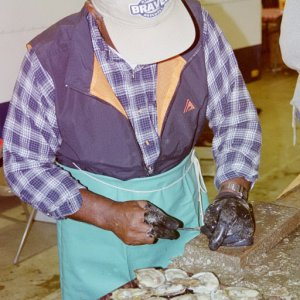 Professional shucker preparing oysters for sale to the public
